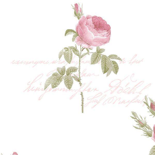 Tapeta ścienna w róże róża Fleurs et Toiles CG28820 Galerie