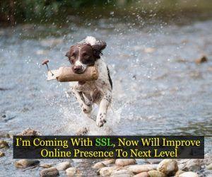 I'm coming with SSL, now will improve online presence to next level! #httptohttpsmigration #httptohttps #http #https #ssl