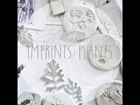 Imprints of Plants. Cyanotype on ceramics. - YouTube