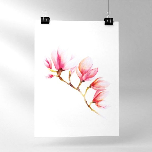 Magnolia, 21x30 cm - Illustration - TAVLOR & POSTERS