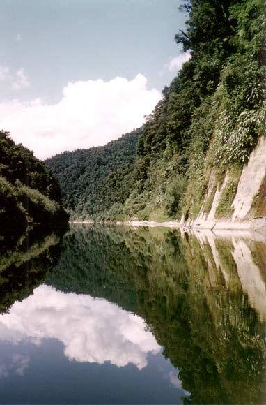 Whanganui River, North Island, New Zealand