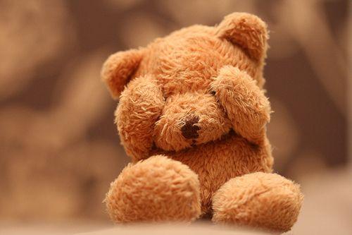 teddy bear of adorableness.
