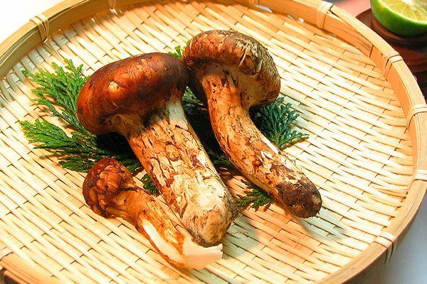 秋の味覚の王様 『 松茸 』 を炊き込みご飯で・・・