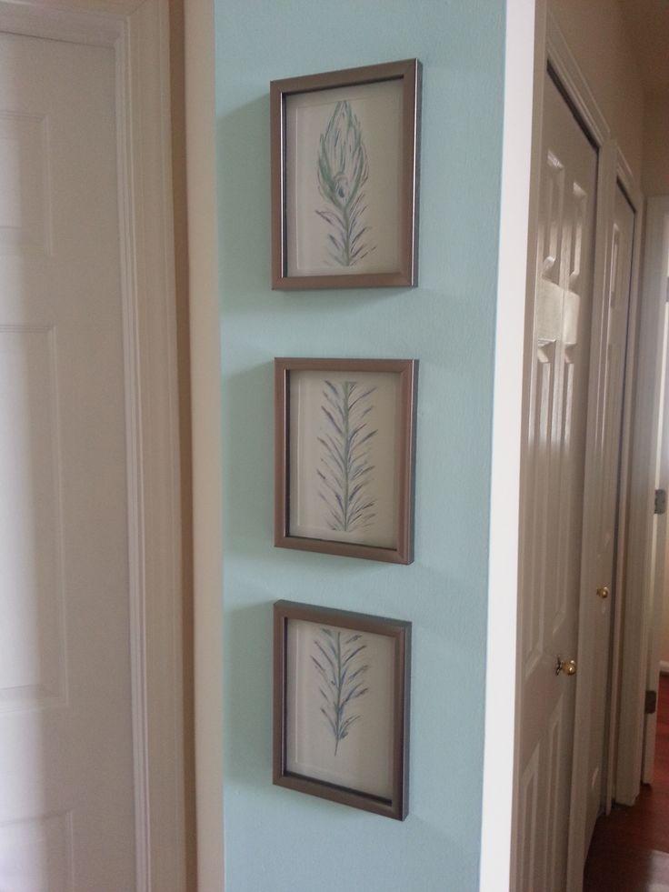 5x7 frames from dollar tree peacock feather hand drawn art dollar tree decor