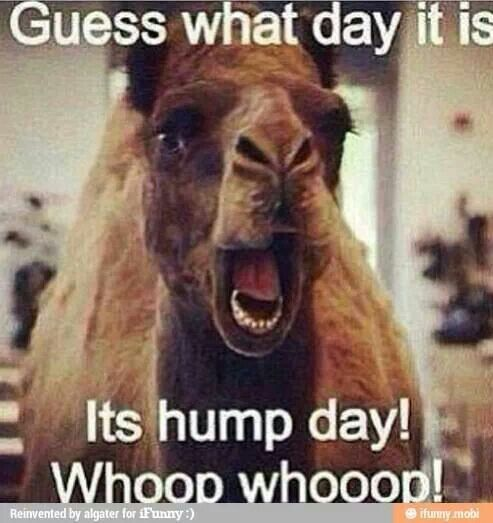 Yes, #Mob, it's Hump Day!!  #ShaveSmarter