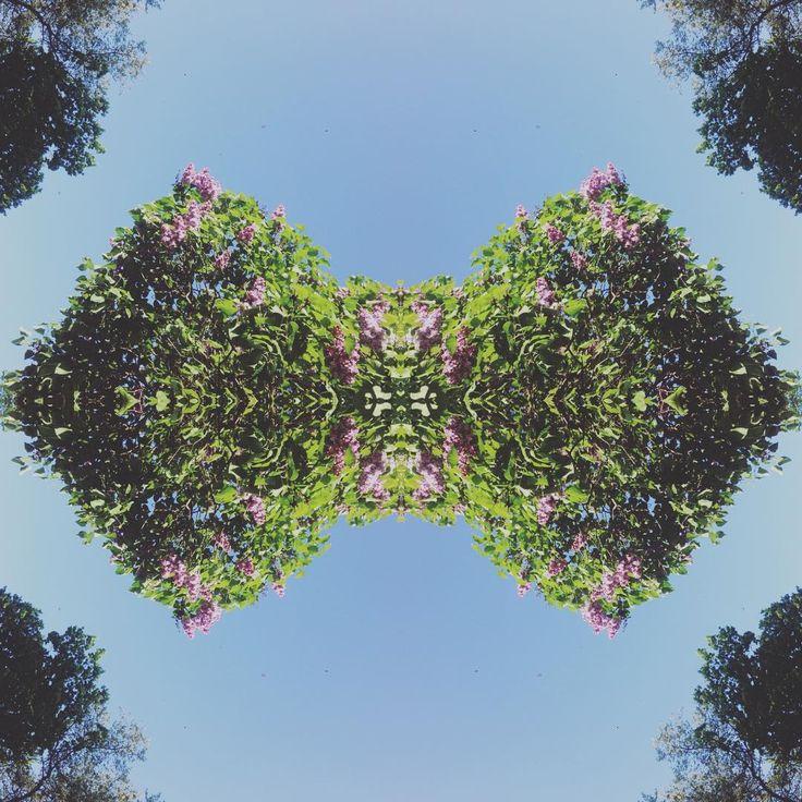 One more! Lilac bow tie! #strövadesign #malmö #springishere