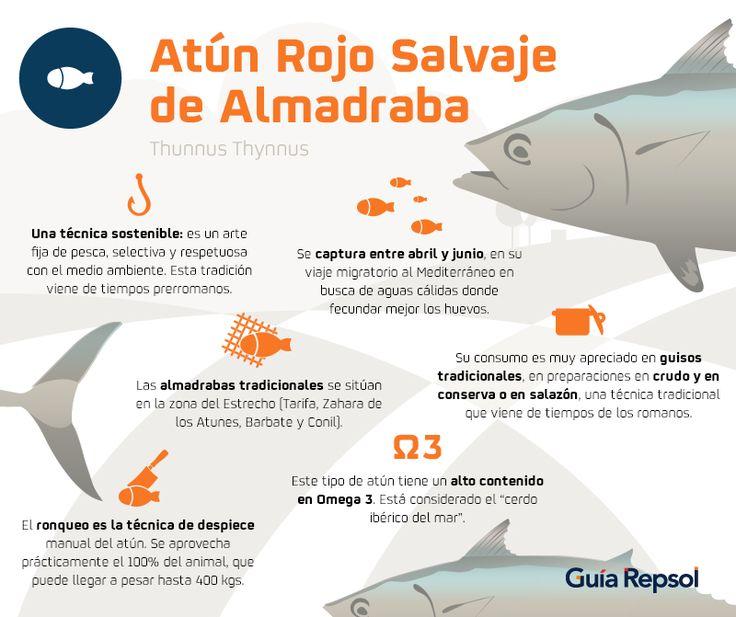 ¿Qué hace tan especial al atún rojo de almadraba?