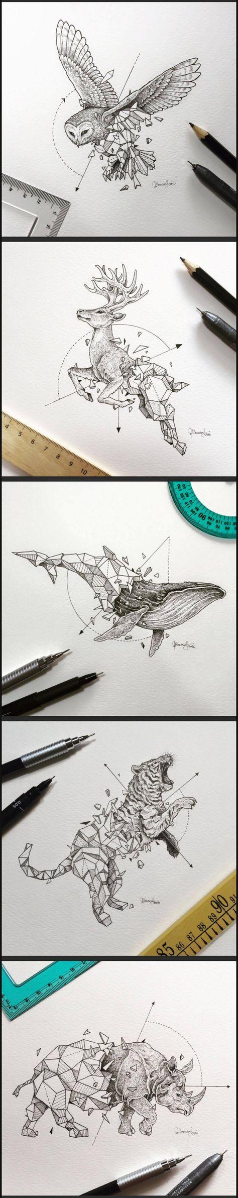 Übergang vom Zeichnen vom Tier zu geometrischen Formen und Berechnungen