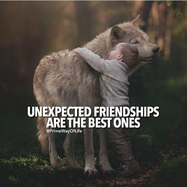 Unexpected Best Friend Quotes: 61 Best Life Quotes Images On Pinterest