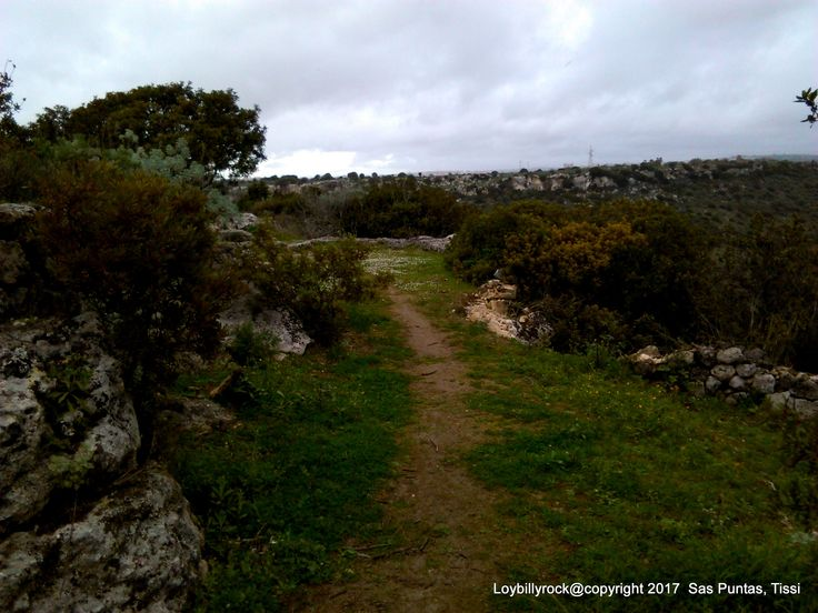 Access to the slightly downhill path, indicated by a sign leading to the tomb, is located near this curve on the left. The path should be walked a few dozen meters until you reach another sign that indicates to follow the path in a small but steep descent that leads to the calcareous counter where the tomb is dug.