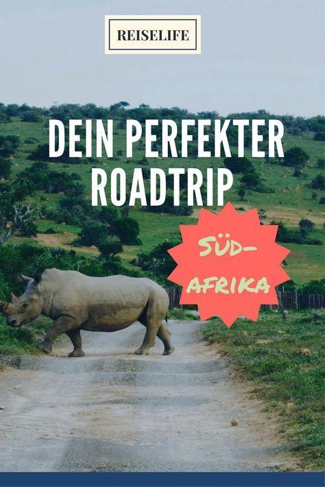 3 Wochen auf Südafrika Rundreise. Dein Roadtrip mit vielen Highlights für unterwegs. Garden Route, Kapstadt und Safari...