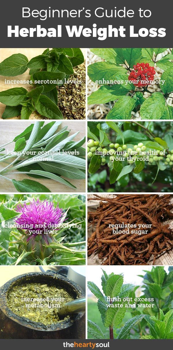 Herbs for weight loss 11 Most Effective Herbs for Weight Loss