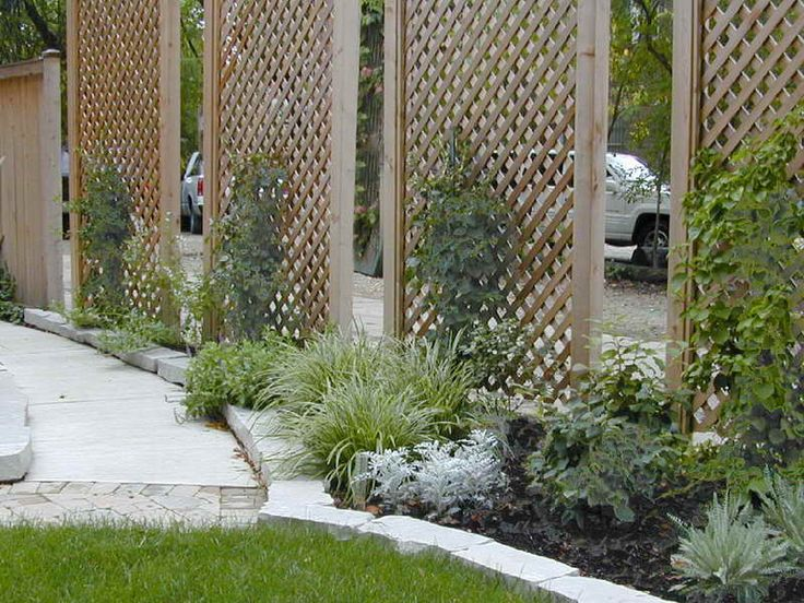 17 best images about backyard privacy neighbors suck on for Lattice yard privacy screen
