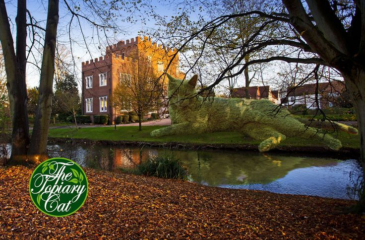 Image result for hertford castle topiary cat