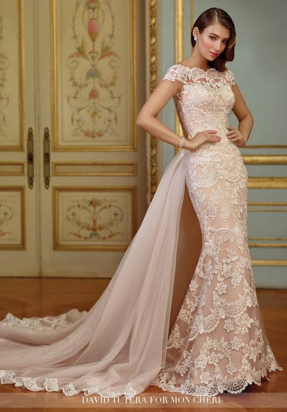 2017 David Tutera wedding dresses for Mon Cheri collection