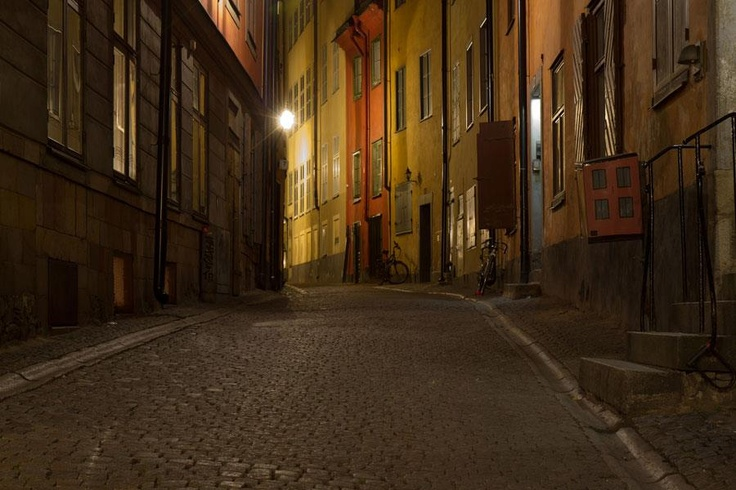 Night Scene*