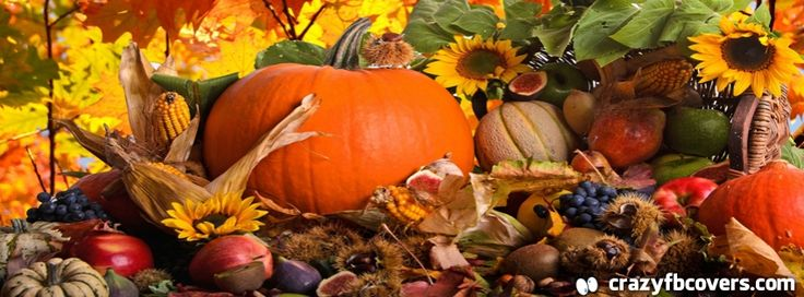 Autumn Harvest Facebook Cover Facebook Timeline Cover