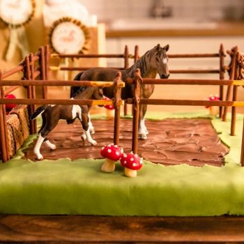 Rezept-Set Pferdekoppel-Geburtstagskuchen 60-R-000001   oetker-shop