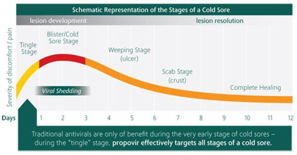 8 Critical Cold Sore Stages