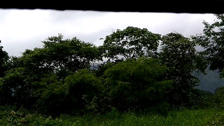 Travelling Kukke Subramanya Temple By Train   Beautiful Nature  Must Watch    Part 6 https://youtu.be/EnBogYMBtqk