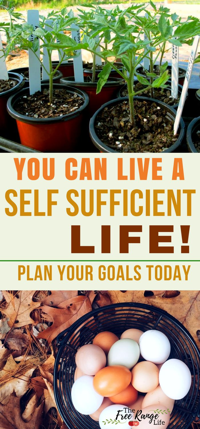 Goal Planning Worksheets to help you make the most of your homesteading year. Get more done by setting actionable goals toward a self sufficient homestead.