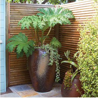create a full outdoor privacy screen with tree stakes
