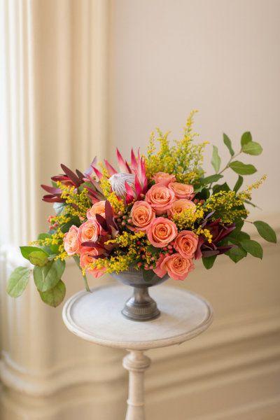 17 Best Images About Leucadendron On Pinterest Floral