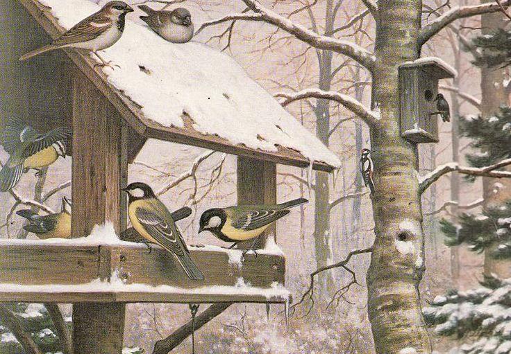 Praatplaat vogels