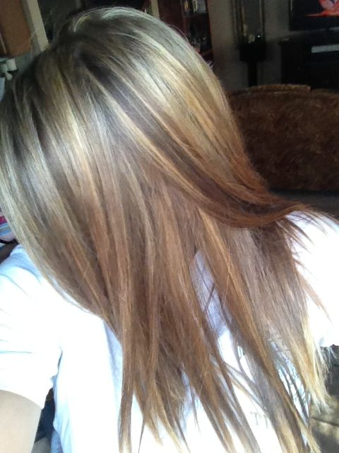 86 best hair images on pinterest blonde brown hair color brown highlighted my hair with revlon frost and glow and i love it pmusecretfo Choice Image
