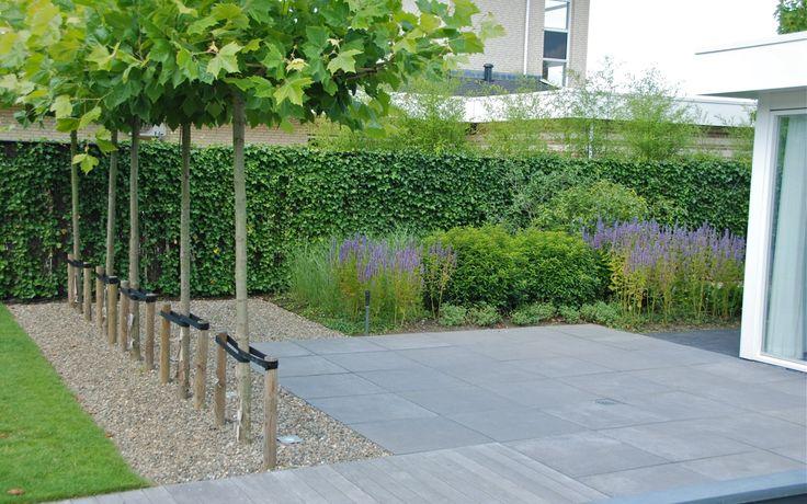 Grote strakke tuin bij villa in Lelystad. Van Veen Tuinontwerpen tuinontwerp hovenier tuinaanleg