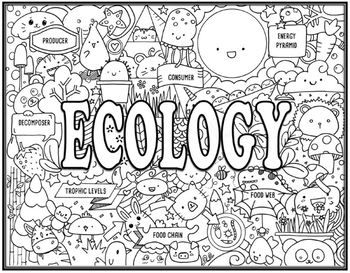 Ecology Seek And Find Science Doodle Page Science