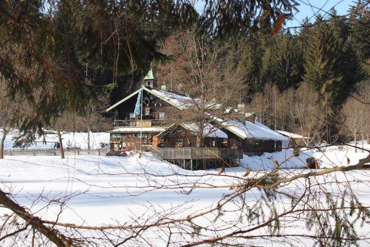 Wunderschöne und abwechslungsreiche Familienwanderung zum Schwellhäusl im Nationalpark Bayerischer Wald