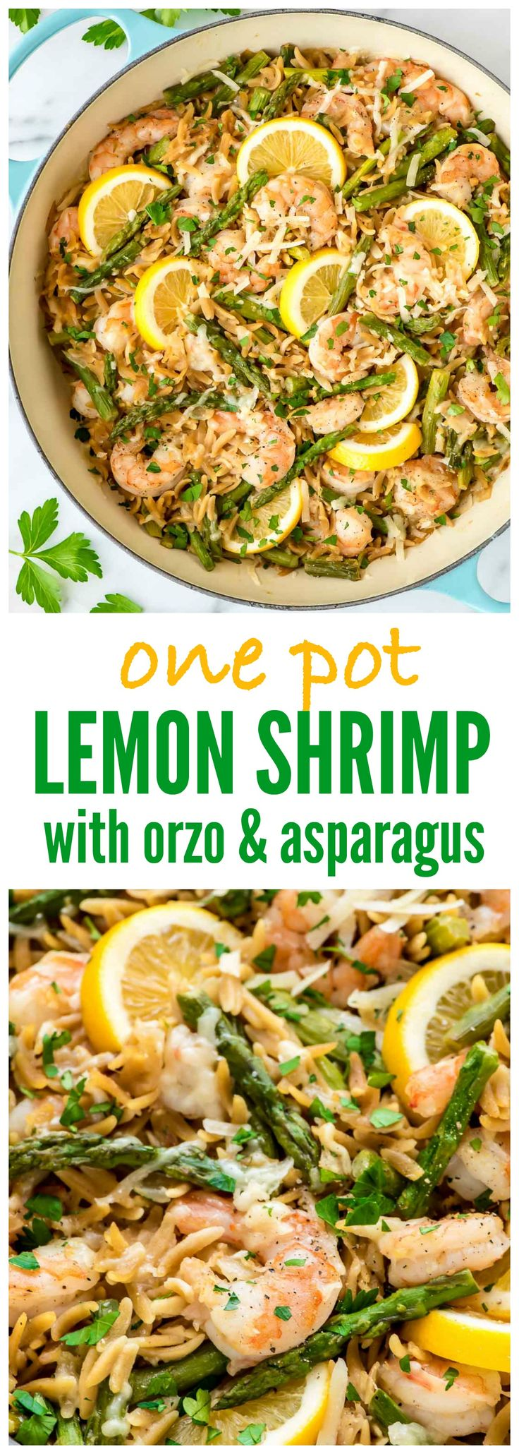 Lemon Shrimp Pasta with Orzo and Asparagus – a simple, delicious one-pot meal! So easy and perfect for busy weeknights. Even the orzo gets cooked right in the pot! @wellplated