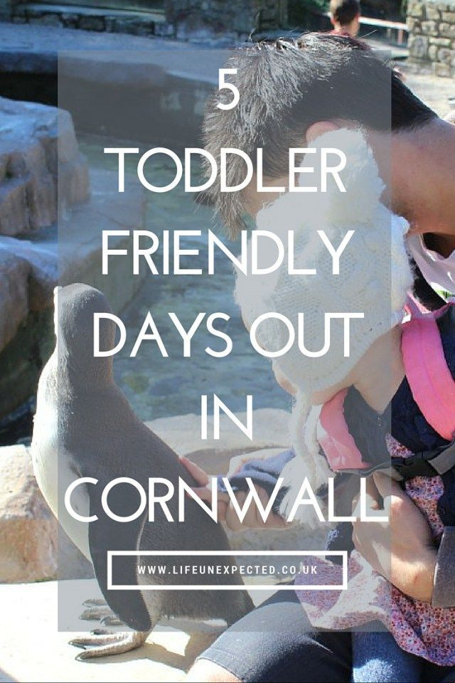 5 Toddler Friendly Days Out In Cornwall. Coming to Cornwall with your toddler in tow? Check out these toddler friendly days out in Cornwall.