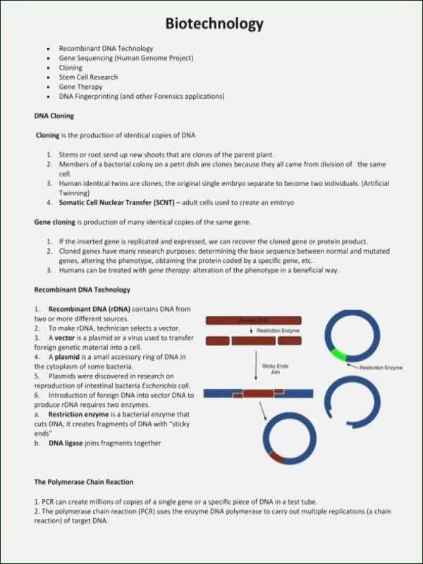 50 Dna Mutations Practice Worksheet Answer In 2020 Practices