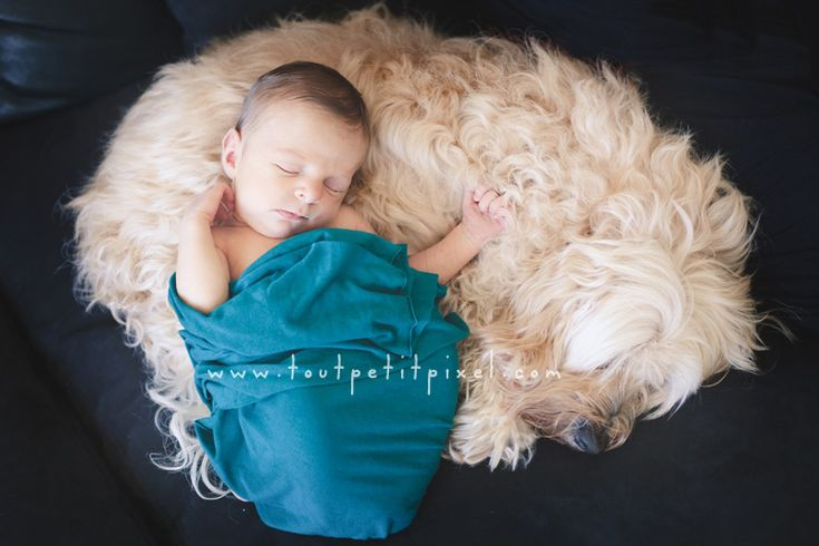such a cute idea if the dog will participate lol already best friends