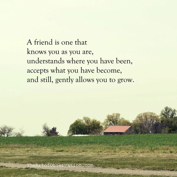 # friend quote