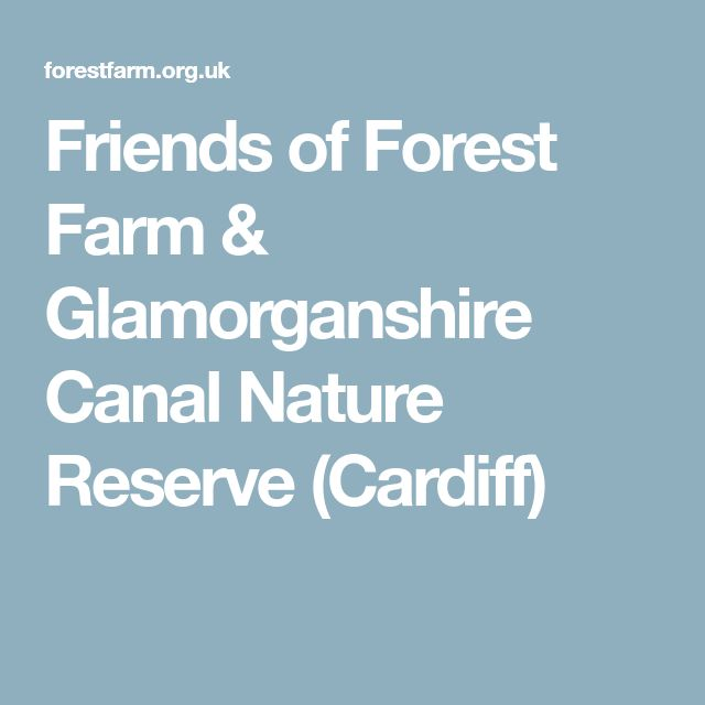 Friends of Forest Farm & Glamorganshire Canal Nature Reserve (Cardiff)
