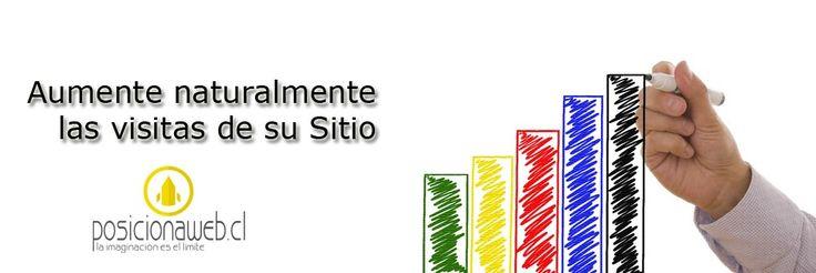 Que Metro Baje el Costo del Pasaje - Posicionamiento Web SEO Chile   Posicionamiento Web SEO Chile