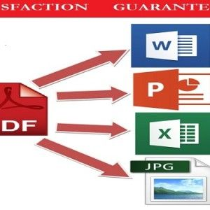 Need file conversion? PDF to Word, Excel, Power Point, JPG or another? I am here to http://www.mrsliwka.com/#portfolio #fileconvertion #convertion