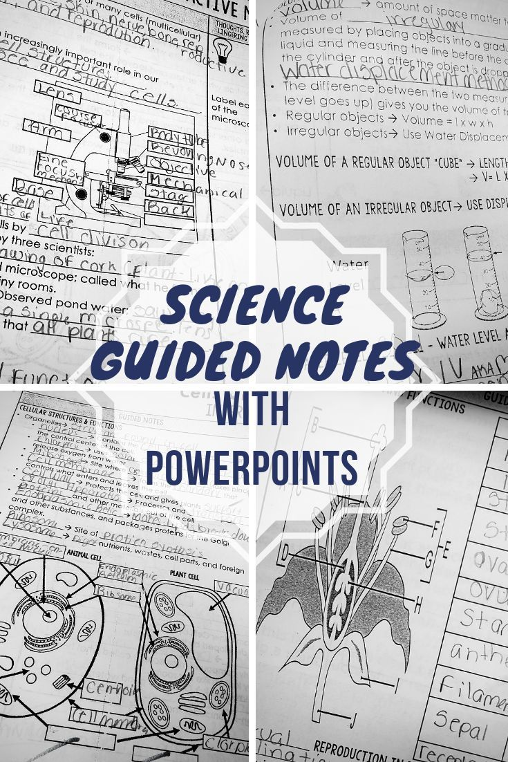 NGSS Science Guided Notes & PowerPoints BUNDLE Google