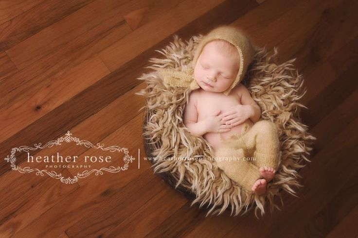 indian prime minister photo gallery po40QR