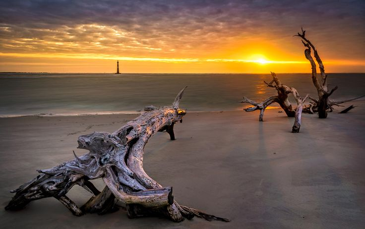 Photograph Lighthouse and Driftwood by Mel Myers on 500px