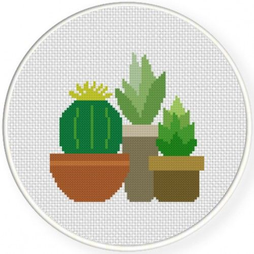 Daily Cross Stitch. A differnt free patyern every day. Pic is Succulents Cross Stitch Illustration