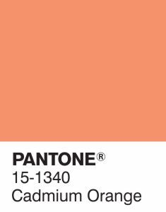 As yesterday was Autumn Equinox we've chosen Cadium Orange as our Pantone color of the week - a fun, playful and sophisticated shade with bold contrast!