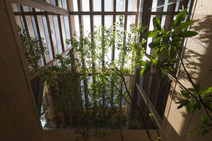Gallery - Shrimp / UID Architects - 7