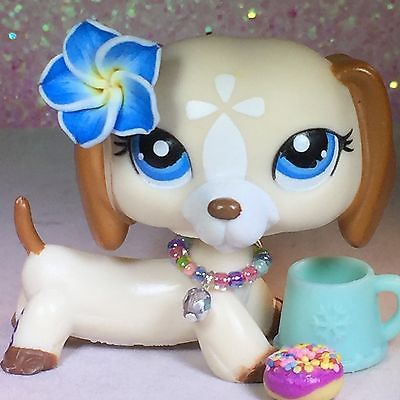 ❤️Littlest Pet Shop LPS #1491 Tan Brown White Dachshund Dog Blue Eyes AUTHENTIC