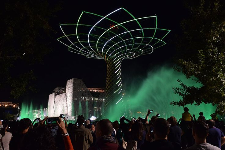 The Tree of Life. The colours of Expo Milan 2015 #raiexpo #expo2015 #worldsfair #milan #italy #treeoflife #alberodellavita #colours #life #green