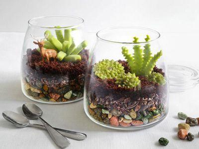 Totally food! Edible terrariums. I likey.