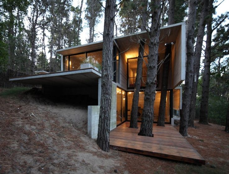tree + house: Architects, Forests Houses, Trees Houses, Contemporary Houses, Interiors Design, Franz Houses, Houses Design, March, Good Air